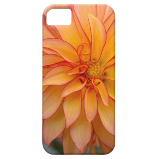 Full Of Glory Case For The iPhone 5