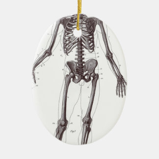 Full Skeleton Ceramic Ornament