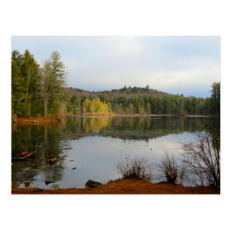 Fullam Pond Postcard