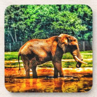 fullsizeoutput_1104 Elephant Coaster
