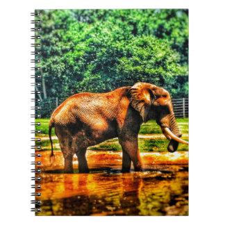 fullsizeoutput_1104 Elephant Notebook
