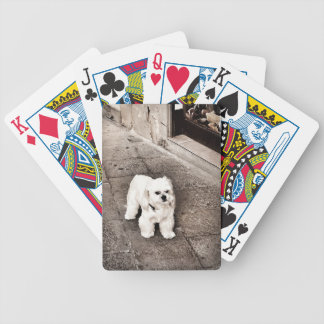 fullsizeoutput_c75 Crabby Dog Bicycle Playing Cards