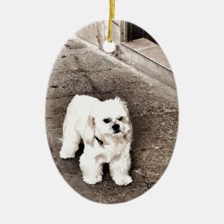 fullsizeoutput_c75 Crabby Dog Ceramic Ornament