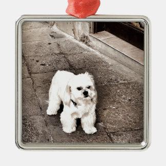 fullsizeoutput_c75 Crabby Dog Metal Ornament