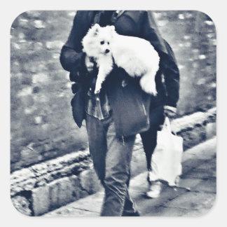 fullsizeoutput_c78 Black and White Pomeranian Square Sticker