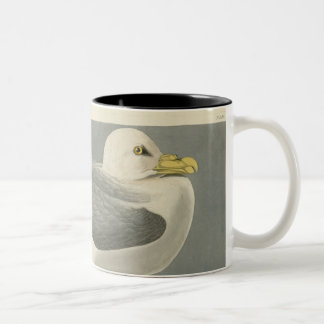 Fulmar Petrel Two-Tone Coffee Mug