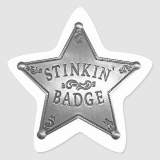 Fun Badge Star Sticker