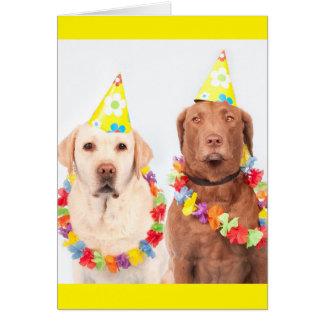 Fun Birthday Party Hat Wearing Grumpy Dogs Card