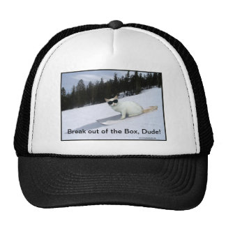 "Fun ""Break out of the Box"" Cat Ball Cap Trucker Hat"