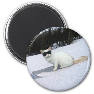 Fun Cat on a Snowboard Magnet