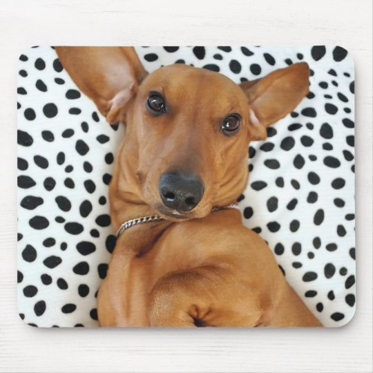 Fun Dachshund Mousepad