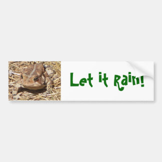 Fun Frog Bumpersticker for fellow drought victims Bumper Sticker