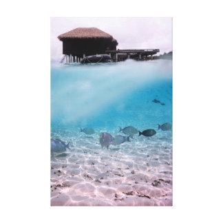 Fun Maldives Snorkelling Adventures Coral Fish Canvas Print
