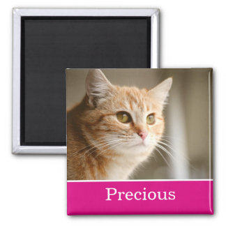 Fun Pink Personalized Pet Photo Magnet