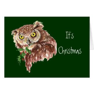 Fun & Sarcastic Christmas Owl Humor Greeting Cards