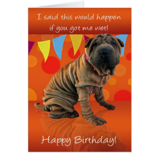Fun Shar Pei Birthday Card With Birthday Humor