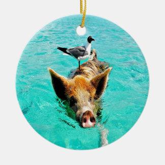 Fun together  staniel cay swimming pig seagull fis ceramic ornament