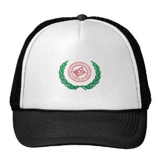 fun top seller best vine trucker hat