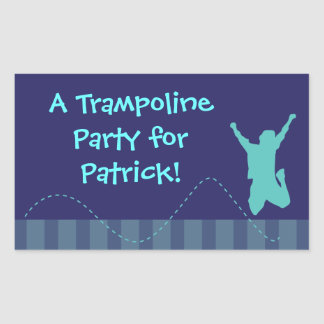 Fun Trampoline Birthday Party Stickers - Boys