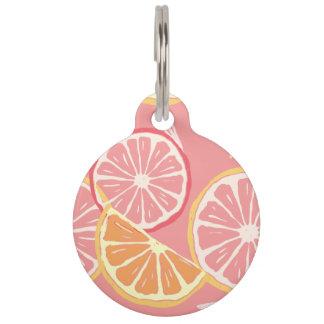 Fun Tropical Pink grapefruit and lemon pattern Pet ID Tag