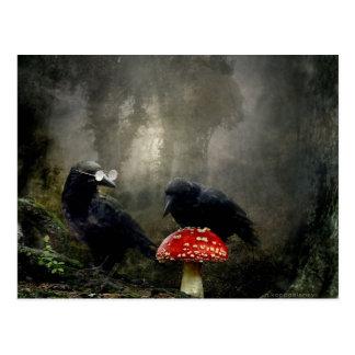 Fungi Experts Postcard