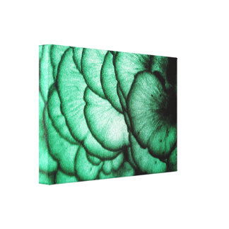 Fungi Flowers/Nature's Abstract Canvas Print