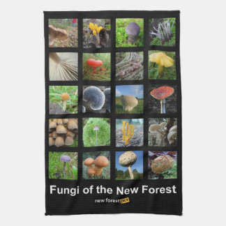 Fungi of the New Forest teatowel Kitchen Towel