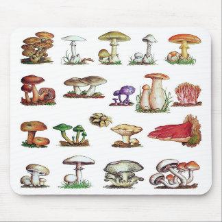 fungus mouse mats