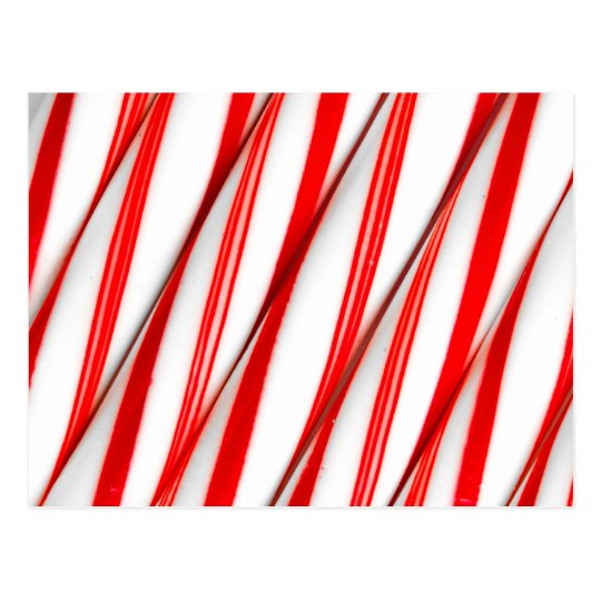 Funky Chrstmas Candy Canes Postcard