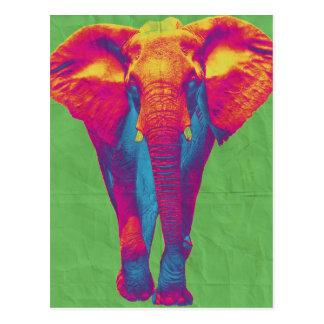 Funky elephant  2 post card