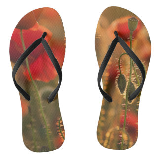 Funky flip flops poppy red