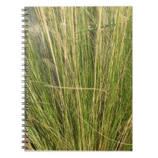 Funky notebok notebook