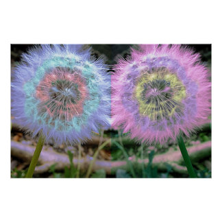 Funky Psychedelic Multi Colored Dandelion Flower Poster