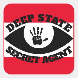 Funn Deep State Secret Agent Square Sticker