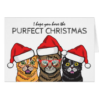 Funny 3 Wise Cats Purfect Christmas Card