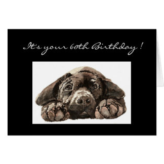 Funny 60th Birthday, Labrador Retriever Card