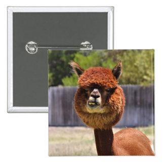 Funny Alpaca Button
