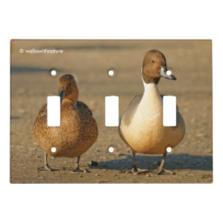 Funny American Gothic / Northern Pintail Gothic Light Switch Cover