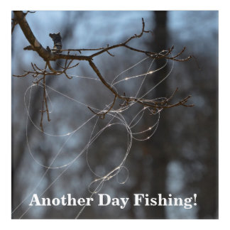 Funny Another Day Fishing Tangled Line On A Tree Acrylic Print