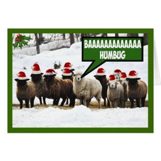 Funny Bah Humbug Card