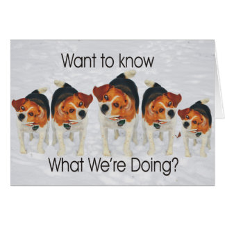 Funny Beagle Ears Flapping Beagle Line Dancing Card