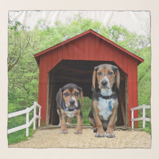 Funny Beagle Pups At The Red Covered Bridge Scarf