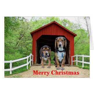 Funny Beagle Red Covered Bridge Christmas Card