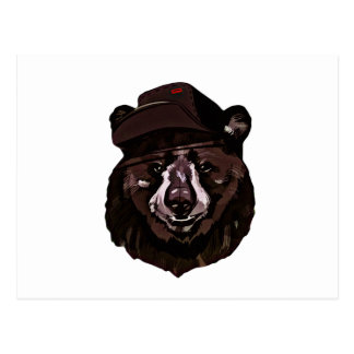 Funny Bear with Hat Postcard
