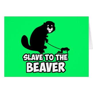 Funny Beaver Card