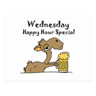 Funny Beer Drinking Camel Postcard