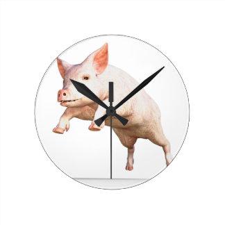 Funny big young  pig jumping high wallclock