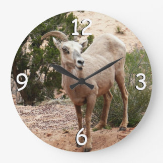 Funny Bighorn Sheep at Zion National Park Clocks