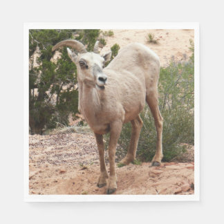 Funny Bighorn Sheep at Zion National Park Disposable Napkins