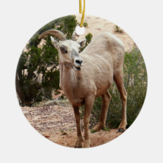 Funny Bighorn Sheep at Zion National Park Round Ceramic Ornament